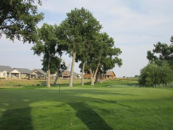 green valley ranch real estate denver