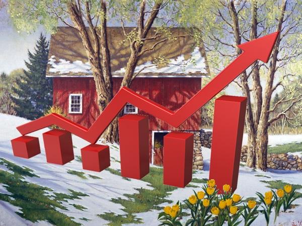 denver real estate stats